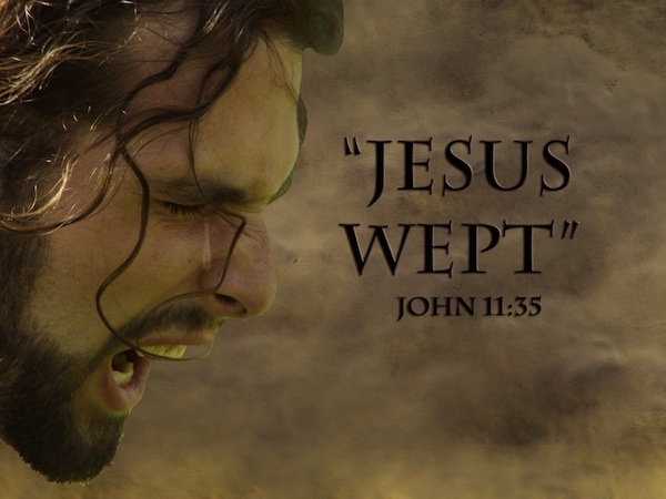 john 1135 analysis Jesus wept - it has been remarked that this is the shortest verse in the bible but it is exceedingly important and tender it shows the lord jesus as a friend, a tender friend, and evinces his character as a man.