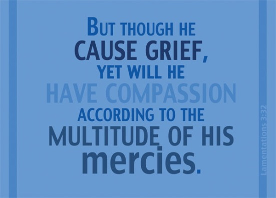 Lamentations 3:32 - But though He cause grief, yet will he have compassion according to the multitude of His mercies.