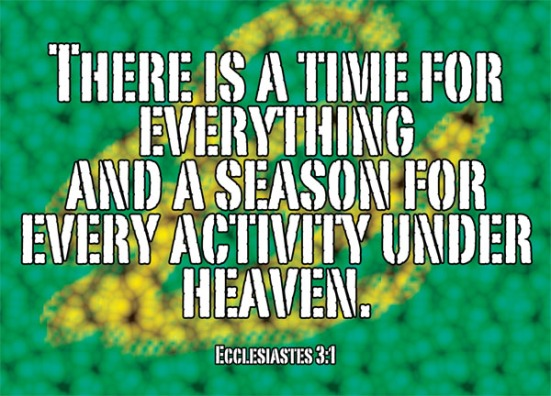 Ecclesiastes 3:1 - There is a time for everything, and a season for every activity under heaven.