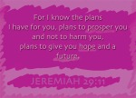 "Jeremiah 29:11 - For I know the plans I have for you,"" declares the Lord, ""plans to prosper you and not to harm you, plans to give you hope and a future."