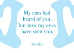 Job 42:5 - My ears had heard of you but now my eyes have seen you.