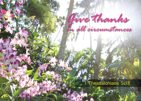 1 Thessalonians 5:18 - Give thanks in all circumstances.