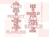 2 Samuel 22:31