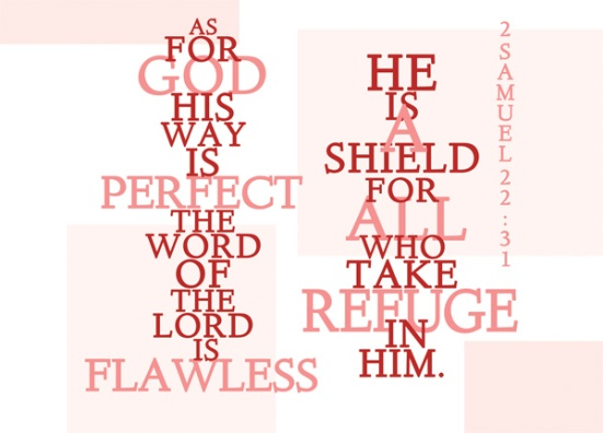 2 Samuel 22:31 - As for God, his way is perfect; the word of the LORD is flawless. He is a shield for all who take refuge in him.