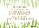 Isaiah 42:3
