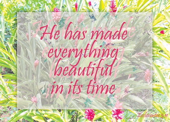 Ecclesiastes 3:11 - He has made everything beautiful in its time. He has also set eternity in the human heart; yet no one can fathom what God has done from beginning to end.