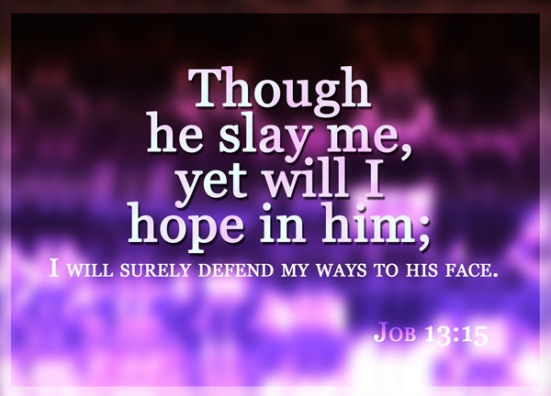 Job 13:15 - Though he slay me, yet will I hope in him; I will surely defend my ways to his face.