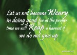 Let us not become weary in doing good, for at the proper time we will reap a harvest if we do not give up.