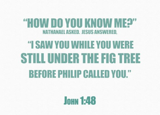 """How do you know me?"" Nathanael asked. Jesus answered, ""I saw you while you were still under the fig tree before Philip called you."""