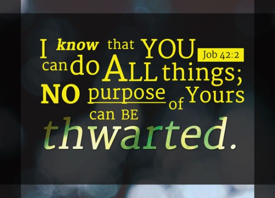 re-Ver(Sing) Verses Job 42:2 - I know that you can do all things; no purpose of yours can be thwarted.